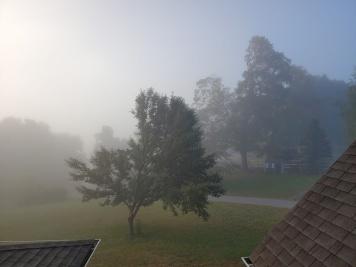 Yesterdays mist #1