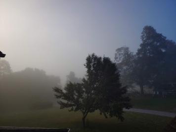 Yesterdays mist #2