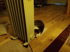 Bella space heater