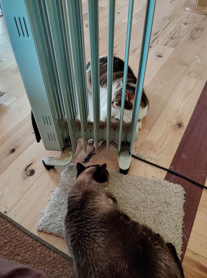 Mimi-Bella space heater