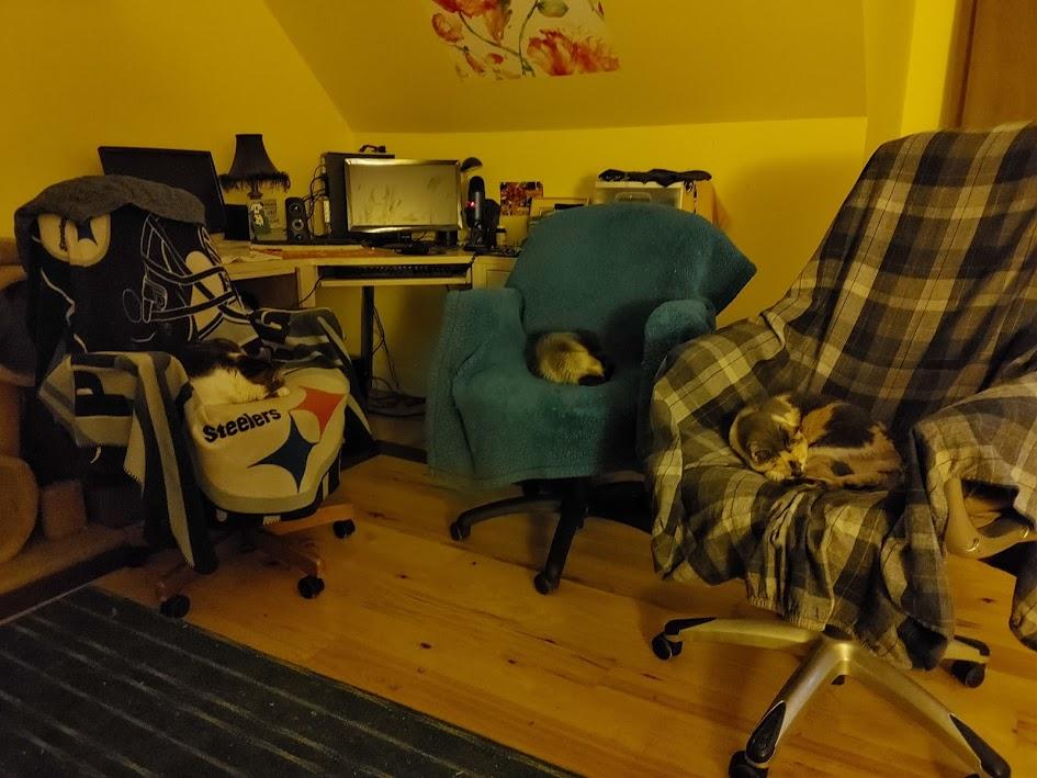 Three computer chairs